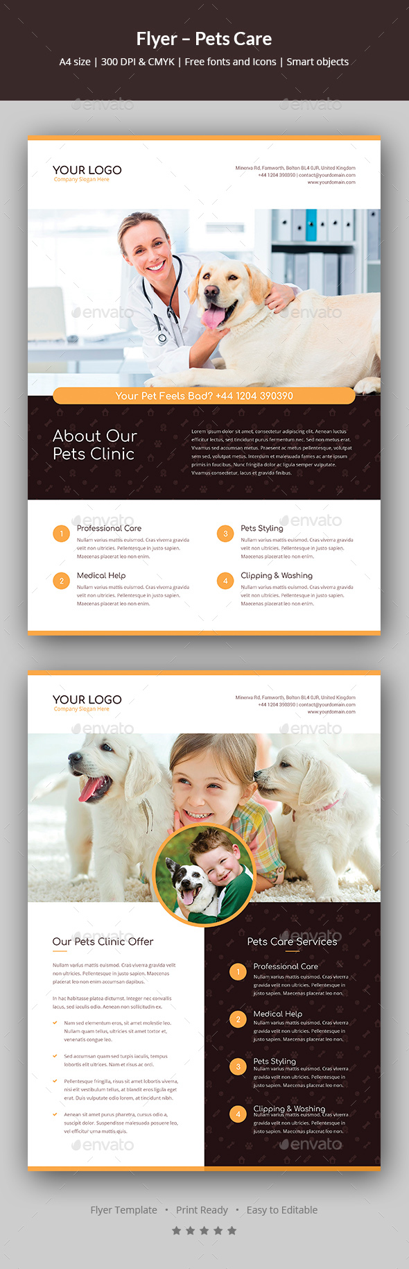 GraphicRiver Flyer Pets Care 20697372