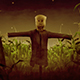 Scarecrow In A Cornfield - Scary Halloween