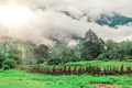 Trekking in Nepal - PhotoDune Item for Sale