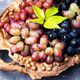 autumn ripe grapes - PhotoDune Item for Sale