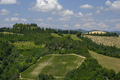 Summer landscape between Brisighella and Modigliana (Romagna, It