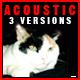 Acoustic Peace