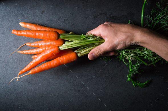 Fresh carrots with a tops in hand on a gray background - Stock Photo - Images