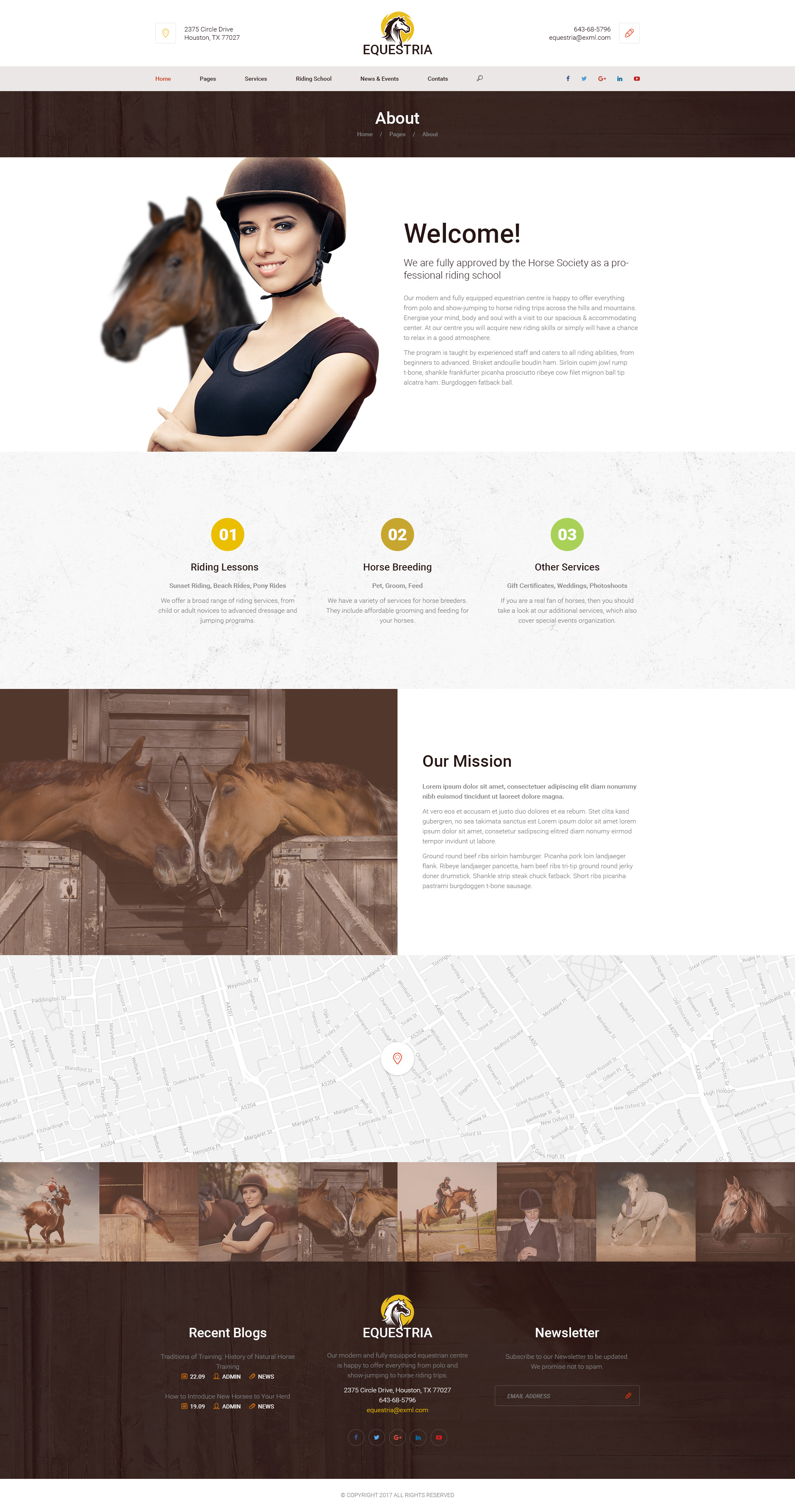 Equestria horse club psd template by mwtemplates themeforest equestria horse club psd template yadclub Image collections