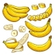 Vector Set of Colored Bananas