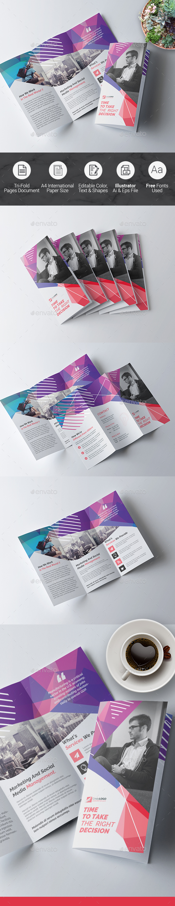 Tri fold Multipurpose Brochure - Corporate Brochures