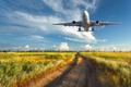 Landscape with passenger airplane is flying in the blue sky