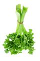 Bunch of Celery - PhotoDune Item for Sale