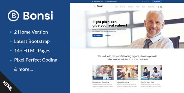 ThemeForest Bonsi Business Consulting and Professional Services HTML Template 20712401
