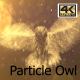 Owl Particle Glow Flying Slow  4K - VideoHive Item for Sale