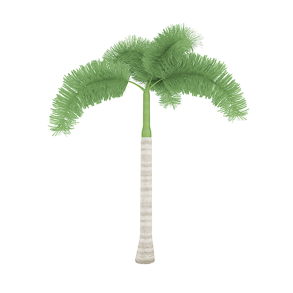 Foxtail Palm - 3DOcean Item for Sale