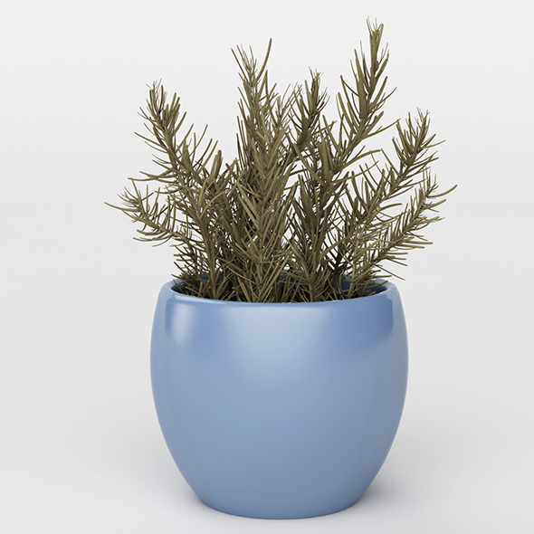 3DOcean Vray Ready Potted Plant 20716071