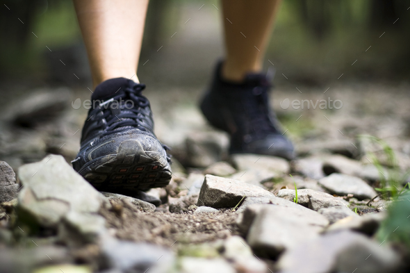 Trail walking - Stock Photo - Images