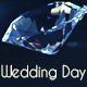 Wedding Day Opener - VideoHive Item for Sale
