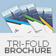 Trifold Brochure Template 16 - GraphicRiver Item for Sale