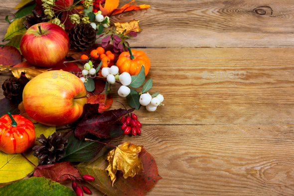 Fall greeting with apples, white berries, golden maple leaves, c - Stock Photo - Images