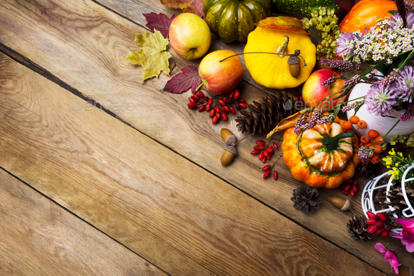 Thanksgiving arrangement with pumpkin and vegetables, copy space - Stock Photo - Images