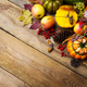 Thanksgiving arrangement with pumpkin and vegetables, copy space - PhotoDune Item for Sale