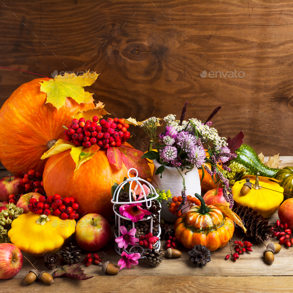 Fall arrangement with pumpkins and decorated birdcage, copy spac - Stock Photo - Images