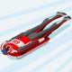 Skeleton Sled Race Winter Sports