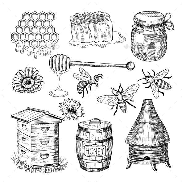 Honey Bee Collection - Miscellaneous Vectors