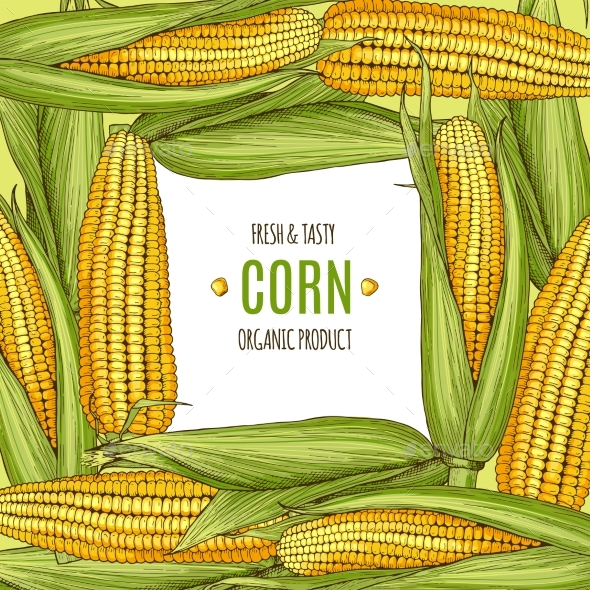 Colored Background Illustration with Corn - Food Objects