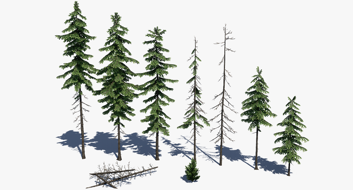 Low Poly Pine Tree Pack By Polyasset3d 3docean