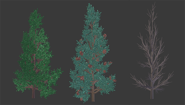 3DOcean Low Poly Customizable Pine Tree 20728115