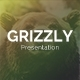 Grizzly PowerPoint Template - GraphicRiver Item for Sale