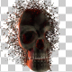 Skull Transforming - VideoHive Item for Sale