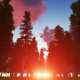 Fabulous Forest at Sunset - VideoHive Item for Sale