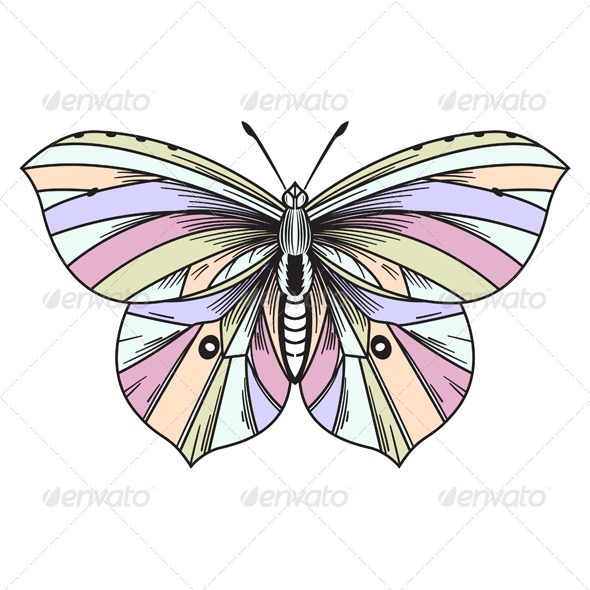 Colorful Butterfly - Animals Characters