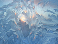frost and sun - PhotoDune Item for Sale