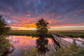 Wooden walking bridge - PhotoDune Item for Sale