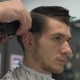 Barber Shears the Client's Hair - VideoHive Item for Sale