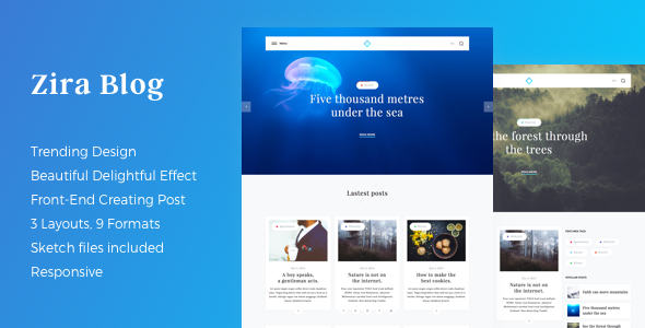 ThemeForest Zira Modern Looking Blogging Theme 17903118