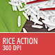 Rice Action - 300 DPI - GraphicRiver Item for Sale