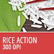 Rice Action - 300 DPI