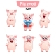 Vector Set of Pig Characters. Set 2