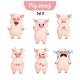 Vector Set of Pig Characters. Set 3