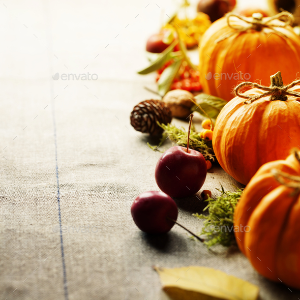 Pumpkins composition - Stock Photo - Images
