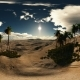 VR 360 Degree Aerial Panorama of Palms in Desert - VideoHive Item for Sale