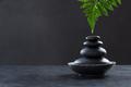 Spa hot stone massage set