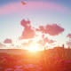 Field Plants at Sunset - VideoHive Item for Sale