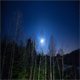 Winter Night Sky in Quebec  - VideoHive Item for Sale