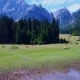 Horses Graze on Green field.Lake Lago Di Fusine Superiore Italy Alps