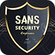 SANS Security Flyer - GraphicRiver Item for Sale