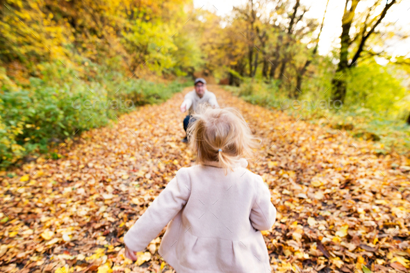 Little girl running to her father. Colorful autumn forest. - Stock Photo - Images