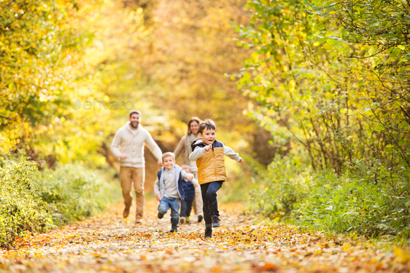 Beautiful young family on a walk in autumn forest. - Stock Photo - Images