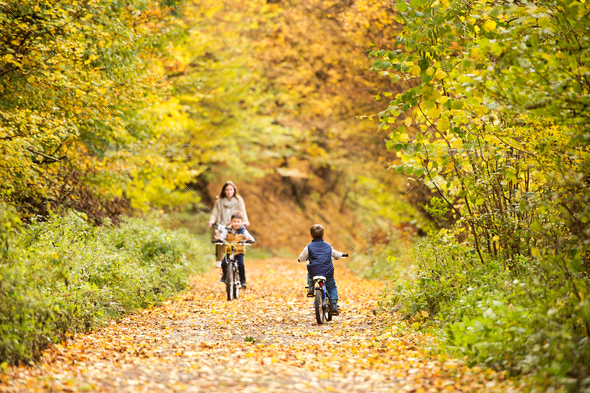 Mother with little sons cycling in autumn park. - Stock Photo - Images